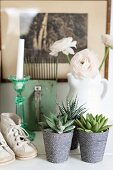 Still-life arrangement of succulents in ornate pots, vintage child's shoes and vase of white flowers