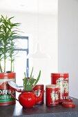 Rotes Kännchen mit eingepflanztem Kaktus und rote Aufbewahrungsdosen im Retro-Look