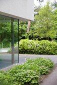 Moderne Fassadenecke mit Übereckfenster-Verglasung und begrünter Terrassenfläche vor Baumbestand