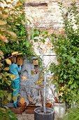 Junge beim Aufhängen von Vogelhäuschen an alter, berankter Backsteinfassade