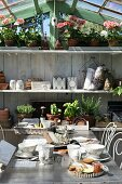 Breakfast table in front of shelves of potted herbs in sunny greenhouse