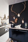 Hunting trophies and stuffed birds hung on black-painted wall next to floor-to-ceiling open doorway with view into kitchen