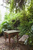 Mossy wooden table and weathered bench in garden on floor covered in leaf litter