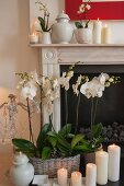 White pillar candles and white orchids in front of fireplace and on mantelpiece