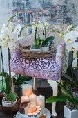 White orchids and candles around and on armchair with purple upholstery