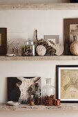 Pictures and various collectors' items on rustic wooden shelves in country-house interior