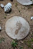 Wet footprint on path stepping stone next to large seashell in garden