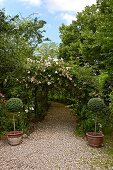 Curved gravel path below rose-covered arbour