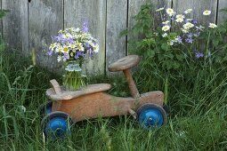 Campanula, ox-eye daisies and chamomile in jar on rustic, wooden push-along trike