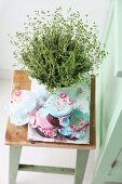 Potted thyme and home-made jam in romantically decorated jam jars on vintage stool