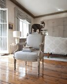 Cat balanced on backrest of Baroque armchair in luxurious interior