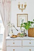 Vintage lamp, collectors' items and house plant on top of old chest of drawers