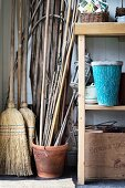 Bamboo canes in terracotta pot and partially visible shelves of gardening utensils