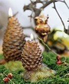 Brennende Kerzen in Zapfenform auf Moosbett als weihnachtliche Dekoration