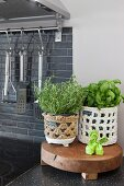 Kitchen herbs in crocheted pot covers on wooden board