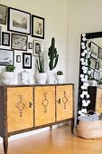 Gallery of black and white photos above cacti on sideboard