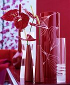 Flamingo flowers in red vases and etched glass vases against red background