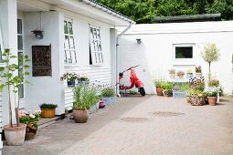 Potted plants on paved terrace outside house with white weatherboard façade
