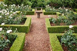 Gardens with geometric, clipped hedges around English-style rose beds