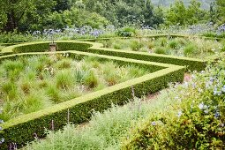 Clipped, English-style hedges