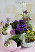 Spring flowers planted in ornamental Easter eggs and white ceramic bowl