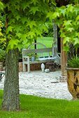 Maple tree in front of garden bench on stone-paved terrace in summery garden