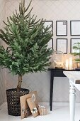 Undecorated Christmas tree in basket against patterned wallpaper