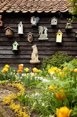 Yellow tulips in garden in front of nesting boxes and animal ornaments hung on wooden wall