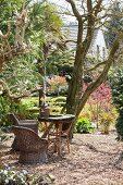 Wicker chairs in seating area under trees