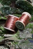 Two reels of copper wire lying on tree trunk