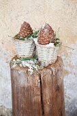 Two pine cones in small baskets on wooden post