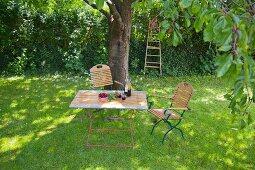 Gartentisch unterm Baum mit Kirschen und Saft
