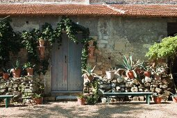 Potted agaves on half-height stone wall outside rustic stone house