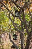 Metal lanterns hanging in tree