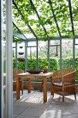 Wicker chairs and wooden table in conservatory with vine growing on ceiling