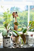 China dog and vintage scissors amongst house plants on windowsill