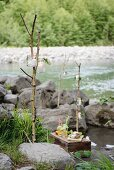 Picnic on wooden crate on river bank with candle lanterns hung from branches