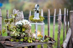 Autumnal still-life arrangement in front of paling fence