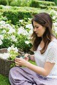 Mädchen schneidet weisse Rosen im Garten
