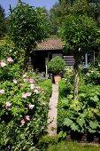 Path leading through flowering garden to log cabin