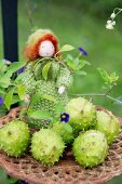 Autumn arrangement of horse chestnuts in cases and felted wool doll on vintage trivet