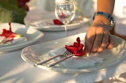 Red flower being arranged with cutlery on white china plate
