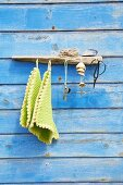 Coat rack made from piece of driftwood mounted on blue board wall