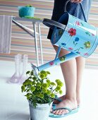 Woman watering plant in zinc pot using floral watering can