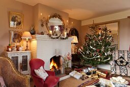 Fireplace and Christmas tree in classic living room