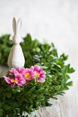Easter bunny sitting in wreath of box decorated with pink primulas