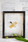Tulip seed head in black picture frame on wall papered with book pages