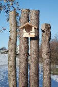 Bird feeding table hung on rustic sawn-off tree trunks