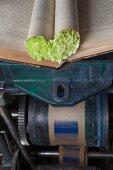 Buchseiten-Herz mit grünen Nelken auf Druckpresse
