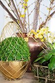 Mind-your-own-business plant inside Easter egg made of gold wire arranged with other plants